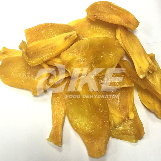 IKE-Jackfruit Drying Machine, Mango Drying Machine, Pineapple Drying Machine-1