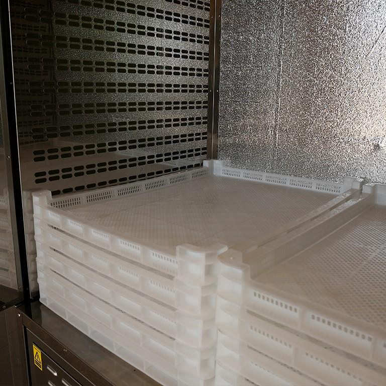 dehydrate in oven dehydrator flower OEM commercial food dehydrator IKE