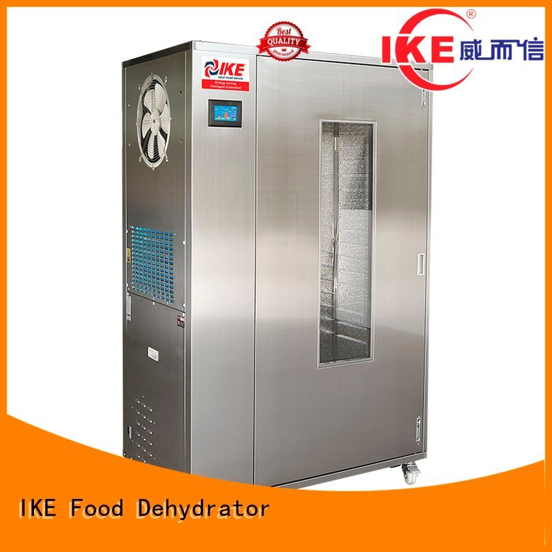 IKE Brand chinese commercial food dehydrator fruit factory