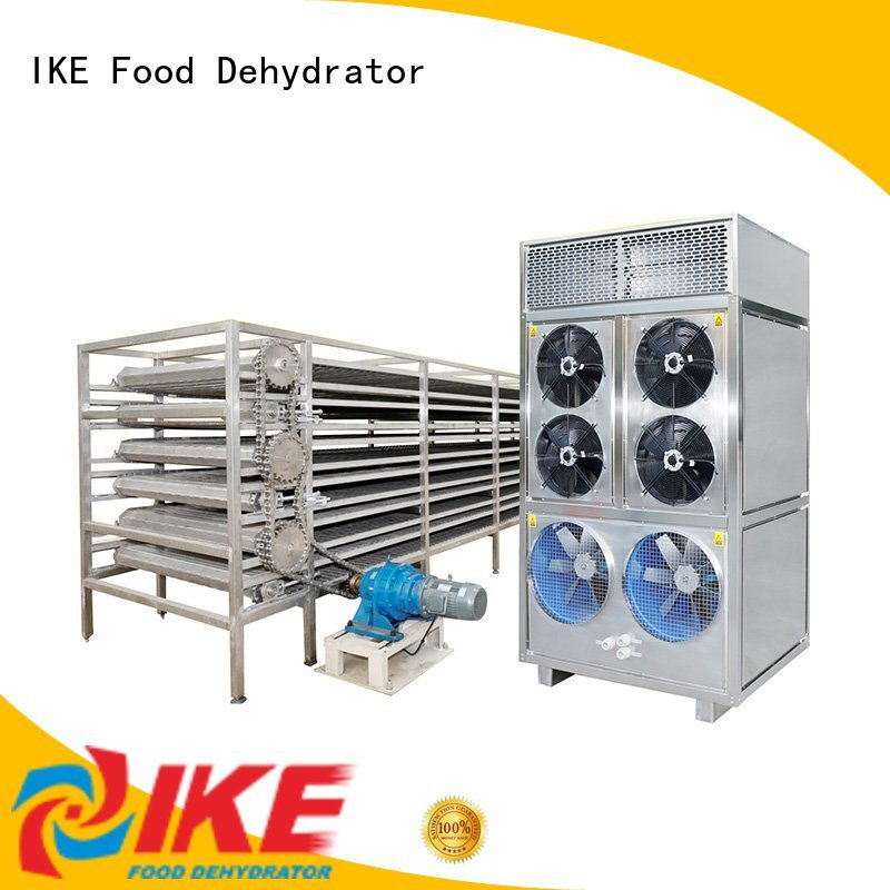 IKE Brand food large drying line manufacture