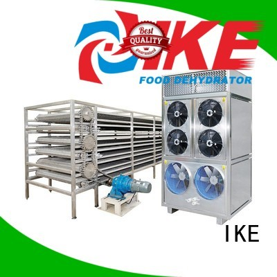 Wholesale conveyor drying line IKE Brand customized