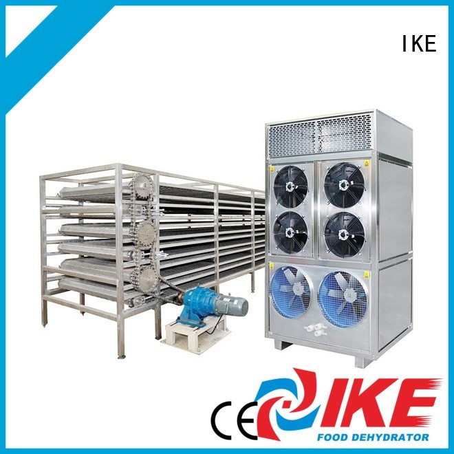 mesh customized commercial food dryer machine food IKE company