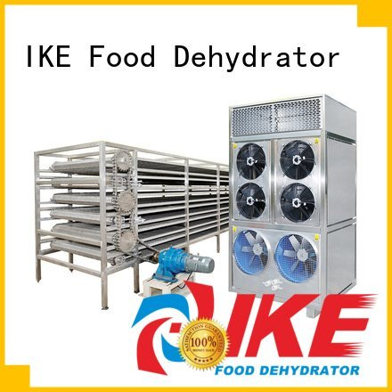 large mesh IKE commercial food dryer machine