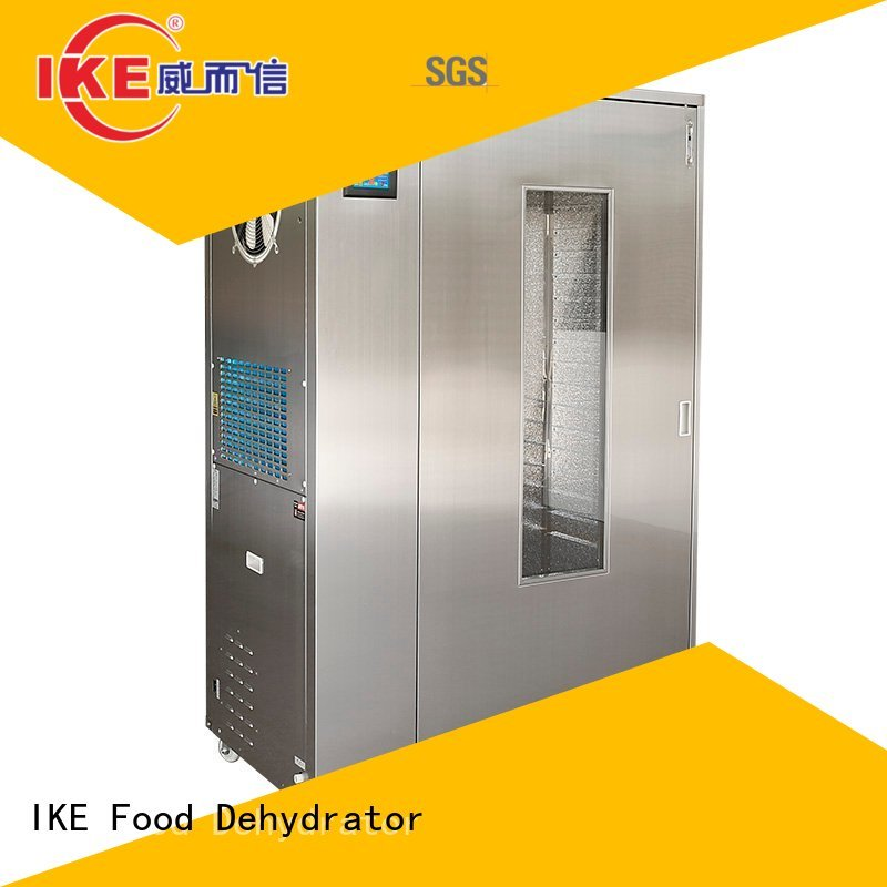 Custom stainless commercial food dehydrator fruit IKE