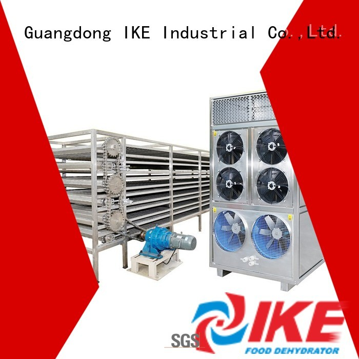 dehydrator customized large IKE Brand drying line