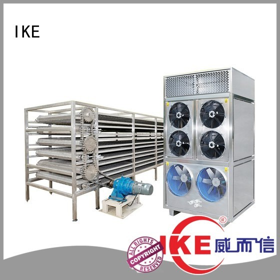 IKE Brand conveyor mesh commercial food dryer machine customized supplier