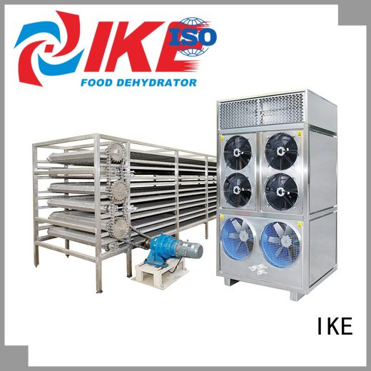 commercial food dryer machine belt drying line IKE