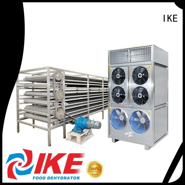 Quality IKE Brand commercial food dryer machine conveyor customized