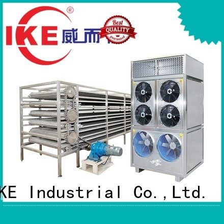 commercial food dryer machine mesh drying line IKE Brand