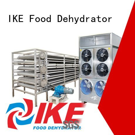 IKE commercial food dryer machine conveyor mesh dehydrator customized