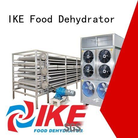 IKE commercial food dryer machine conveyor mesh dehydrator customized