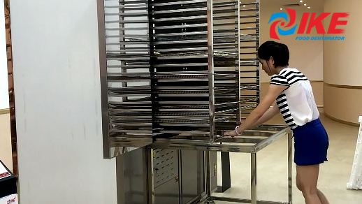 Operation Of WRH-300B Commercial Food Dehydrator