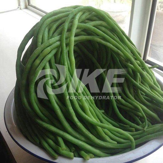 Long Bean Drying Machine
