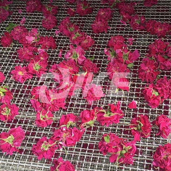 Flower Drying Machine