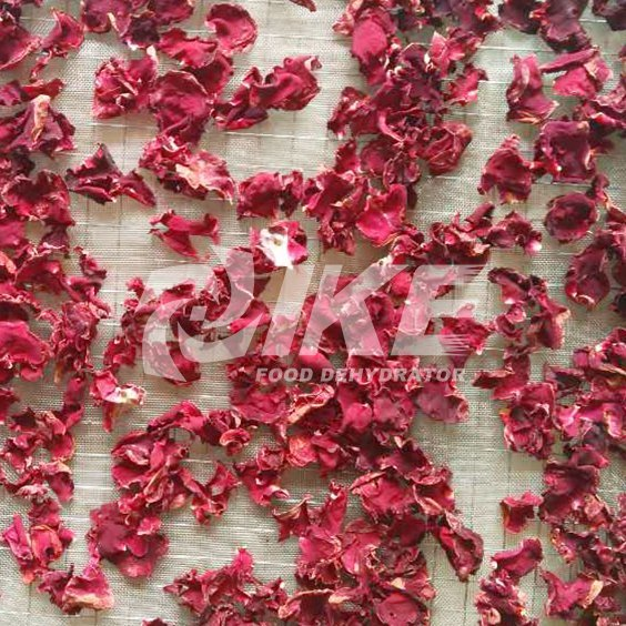 Rose Flower Drying Machine