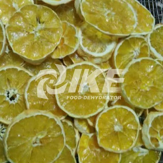 Lemon Drying Machine