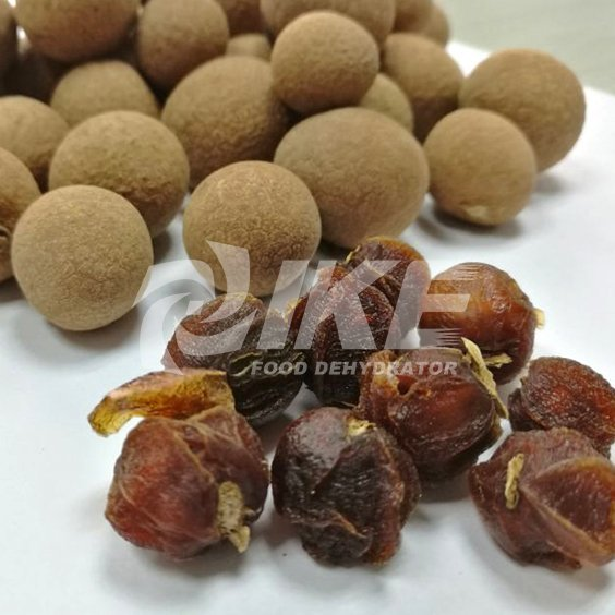 Longan Drying Machine