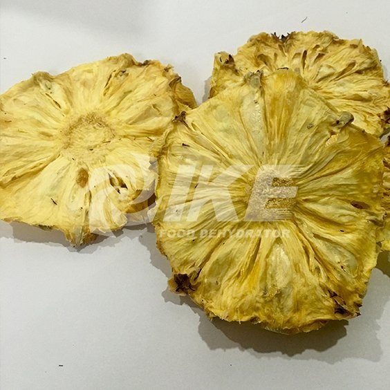 Pineapple Dehydrator