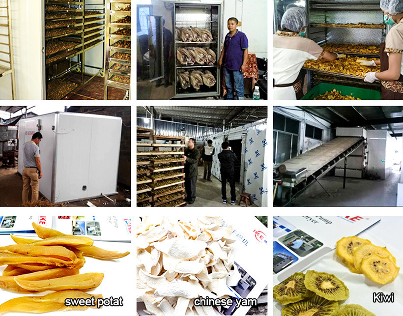 commercial drying vegetable IKE Brand dehydrator machine