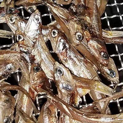 Seafood Drying