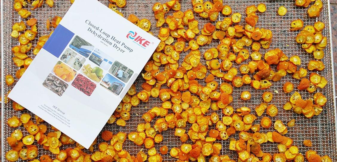 IKE-Kumquat Drying Machine, Best Fruit Dehydrator Provided By IKE