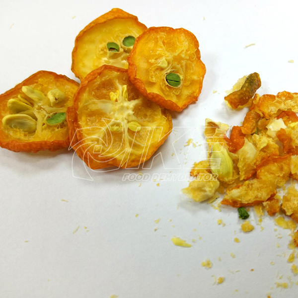 IKE-Kumquat Drying Machine, Best Fruit Dehydrator Provided By IKE-1