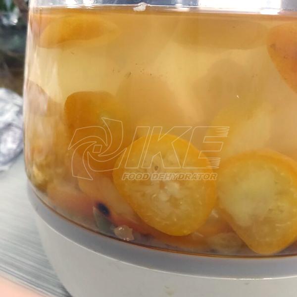 IKE-Kumquat Drying Machine, Best Fruit Dehydrator Provided By IKE-2