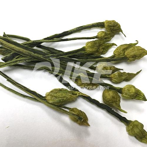 Leek Flower Dehydrator