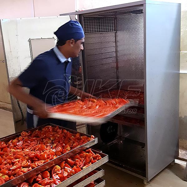 IKE-Tomato Drying Machine, Vegetable Dryer, Vegetable Dryer Machine Manufacturers-1