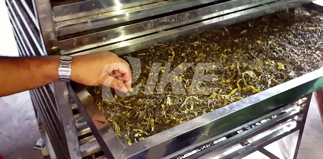 IKE-WRH-500g High Temperature Food Drying Machine | Embedding Food Dehydrator-7
