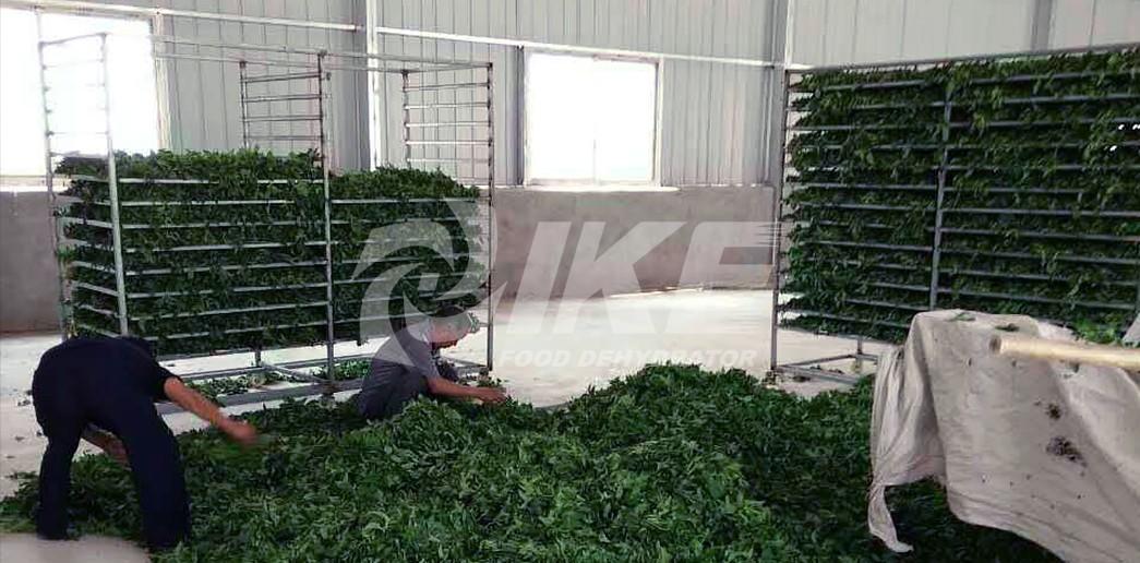 IKE-Shelf | Dehydrator Accessories | Food Dehydrator Accessories-3