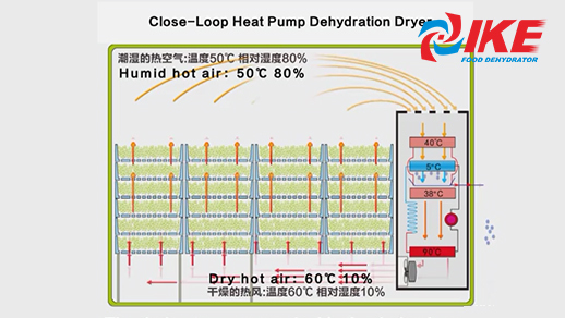 Introduction Of IKE Heat Pump Dehydrator
