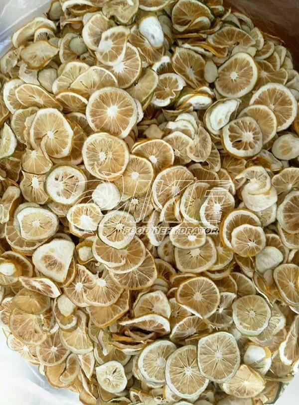 IKE-Looking For Lemon Drying Machine, Commercial Fruit Dehydrator-1