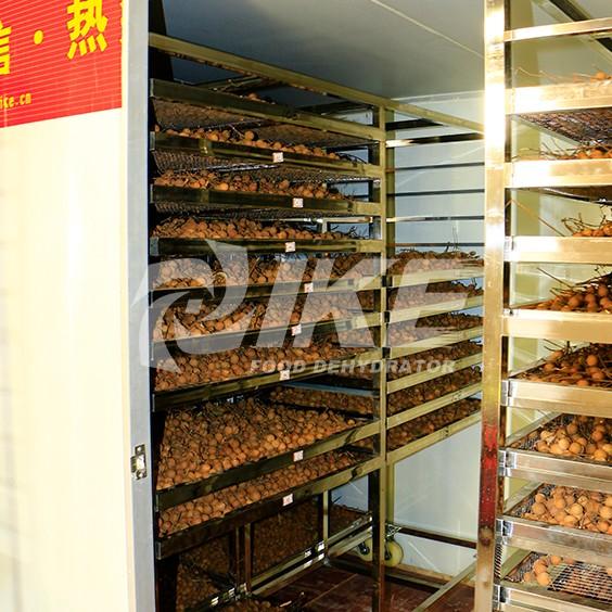 IKE-Details About Longan Drying Machine Fruit Dehydrator Machine