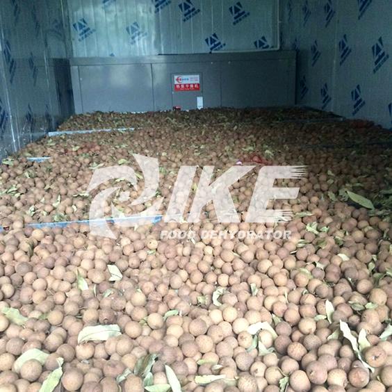 IKE-Details About Longan Drying Machine Fruit Dehydrator Machine-1