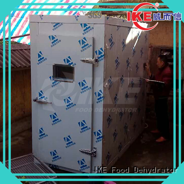 steel Custom drying fruit dehydrator machine IKE vegetable