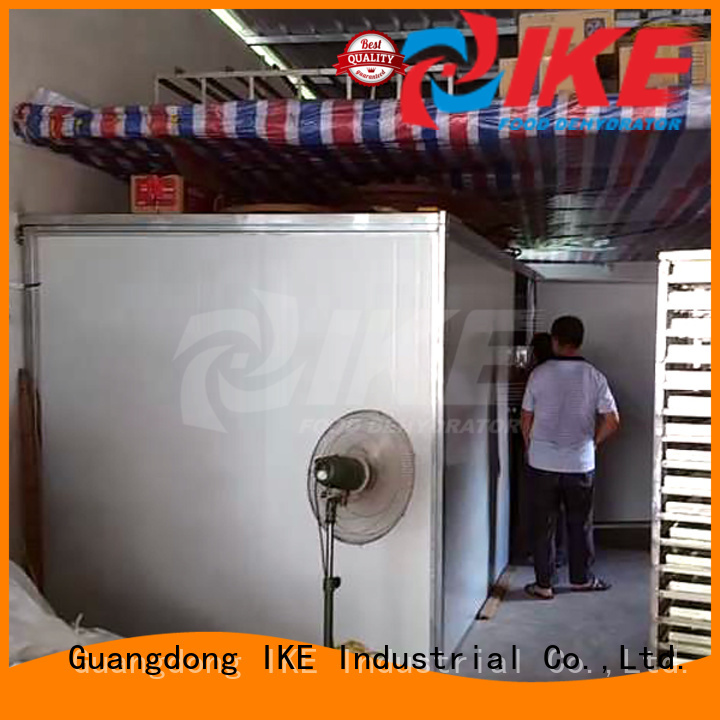 low grade middle professional food dehydrator IKE manufacture